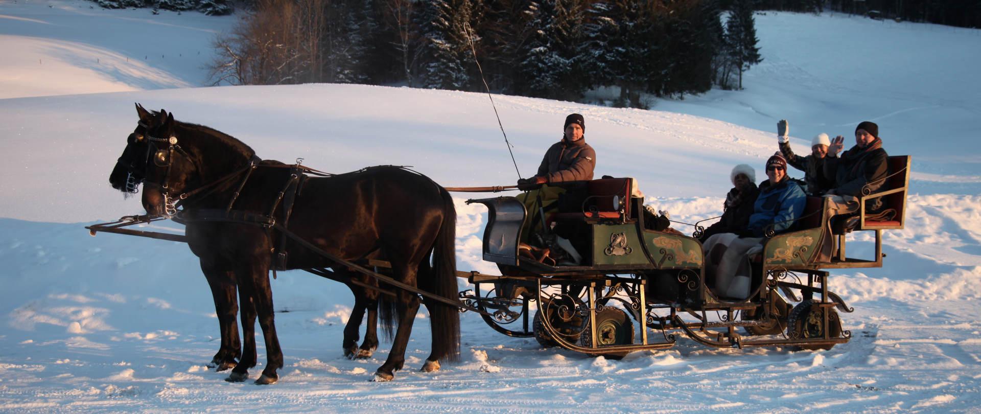 horse drawn sleigh ride tour to styria incl sleigh ride